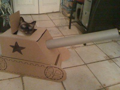 猫に戦車01