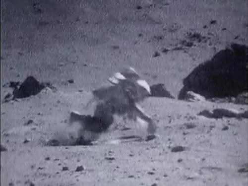 宇宙飛行士たちは月面で結構転んでます02