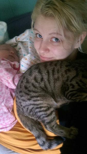 妊娠中に拾った猫が、今は赤ちゃんと親友に01