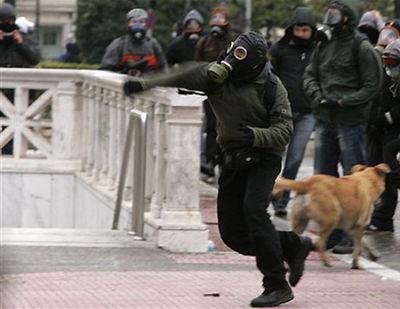 ギリシャの暴動犬05