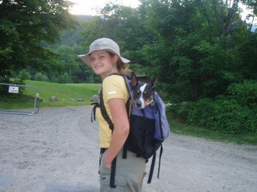 うちの犬は腰が悪いのにハイキングが大好き05