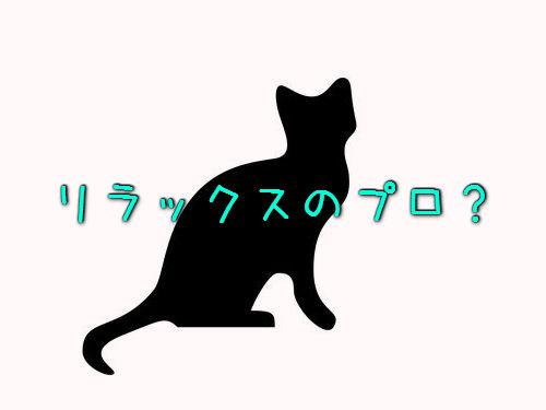 リラックス猫00