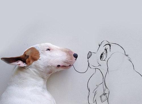 愛犬と10倍楽しむ方法10