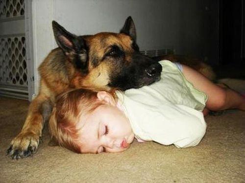 ペットと睡眠09