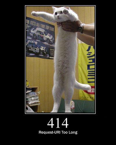 猫でHTTPステータスコード14