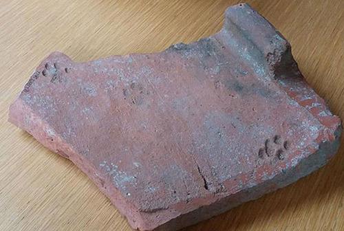 古代ローマの猫の足あと01