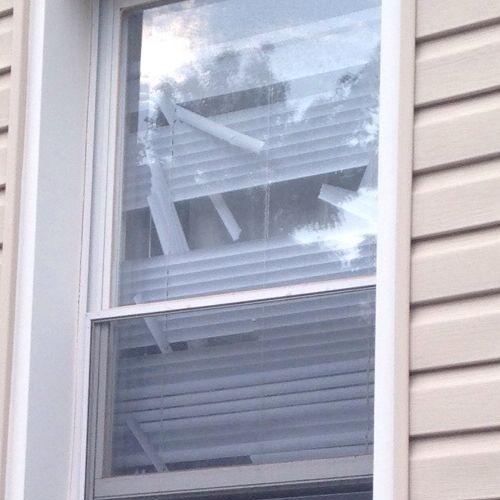 この家に猫がいる理由02