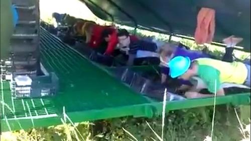 イチゴ収穫マシーン02