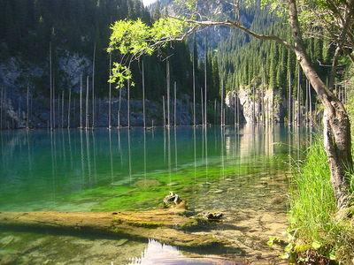カザフスタンのカインディ湖15