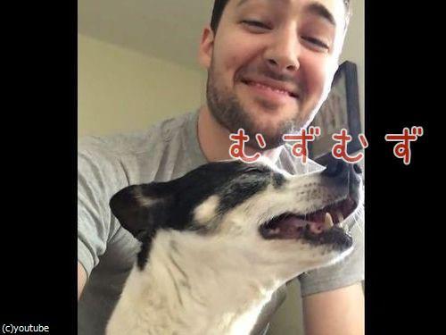 変わったクシャミをする犬00