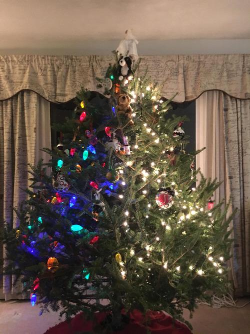 妻とクリスマスツリーの趣味が違う01