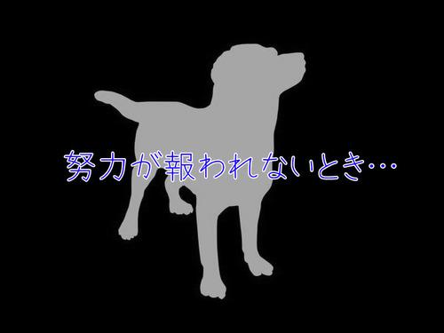 犬「努力は必ず報われるとは限らないとき…」00