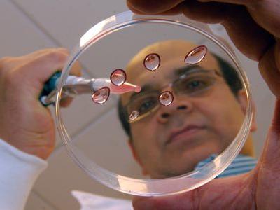 世界初の人工精子が幹細胞から作りだされる