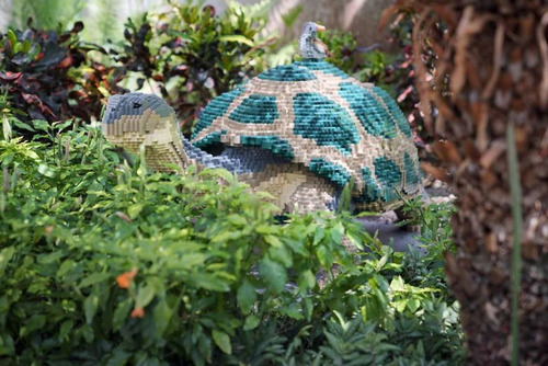 サンアントニオ動物園がレゴの動物を展示11