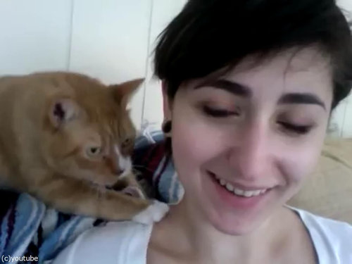 献身的な猫、飼い主の女性の肩をモミモミ03