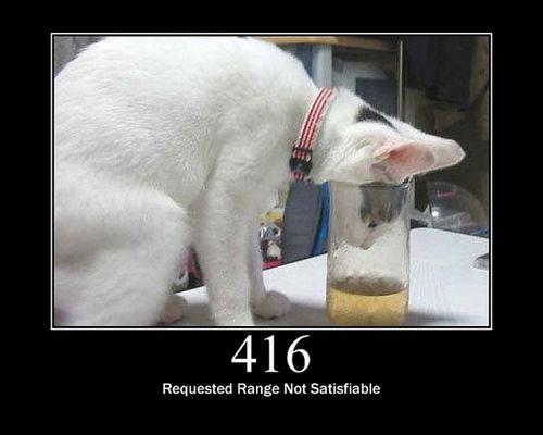 猫でHTTPステータスコード15