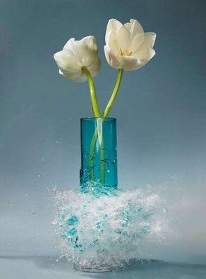 生け花と花瓶─破壊の美学12