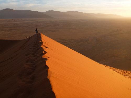 ナミブ砂漠のDune4504