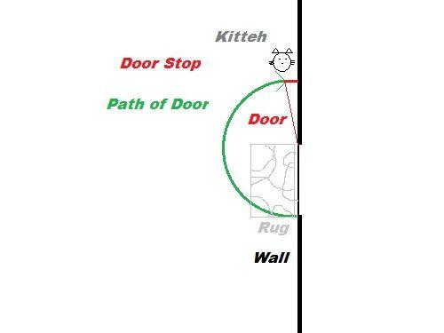 盲目の猫が外に出たいとき03