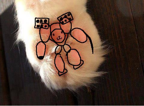 猫の肉球にテディベア02