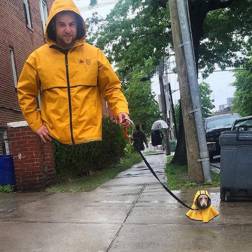 犬のレインコート05