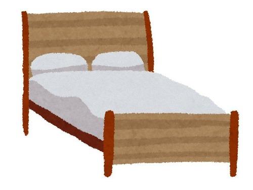 猫が喜ぶ人間用ベッド00