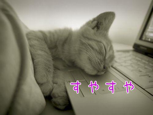 昼寝をする人は早死にの傾向
