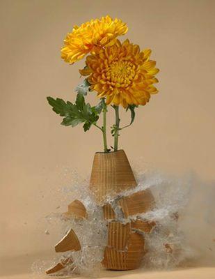 生け花と花瓶─破壊の美学02
