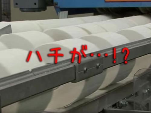 トイレットペーパー製造工場の機械にハチ00
