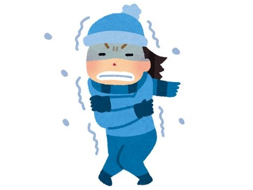 寒さで魚が凍った00