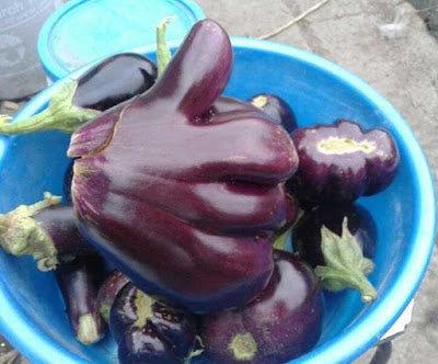 15変わった形の野菜・果物