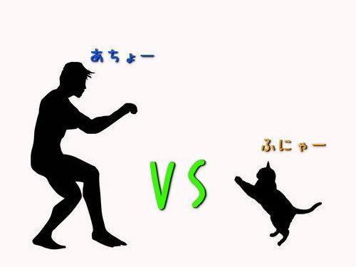 猫が人間の男よりも魅力的な理由00