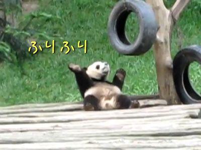 ふりふりパンダ