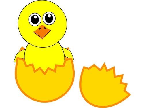 変身するヒナ鳥