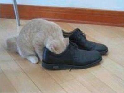 靴の臭い00
