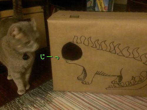 ダンボール猫アート00