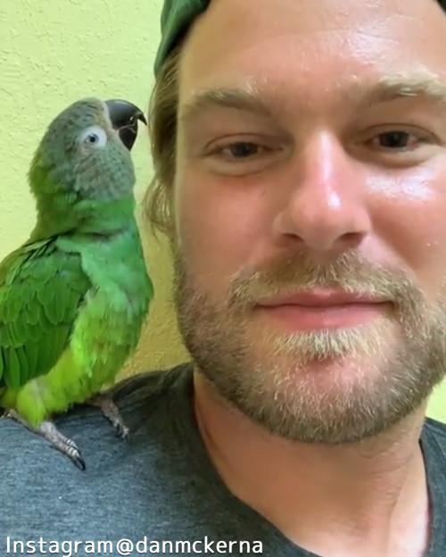 鳥にキスしたら…愛情表現が返ってきたっ!04