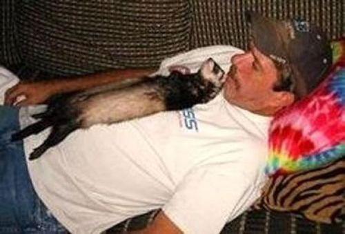 ペットと睡眠12
