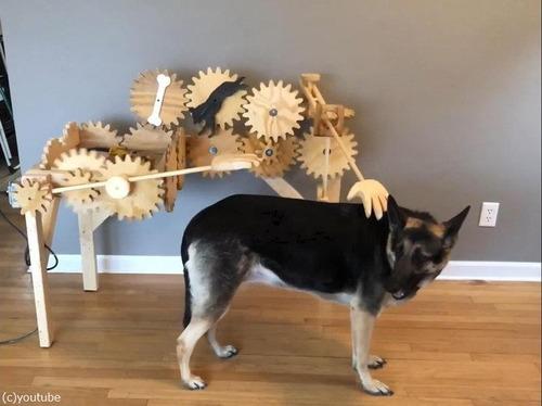 犬を自動でナデナデするマシーン08