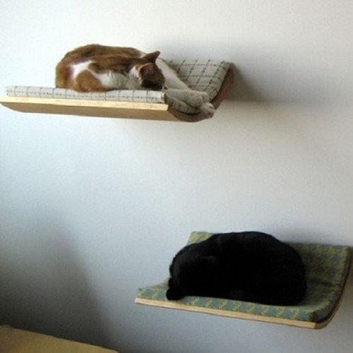 猫の家具21