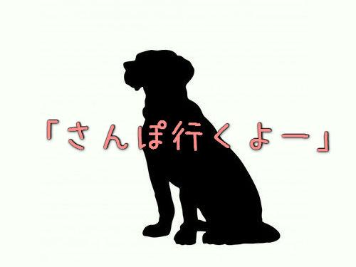 さんぽと犬00