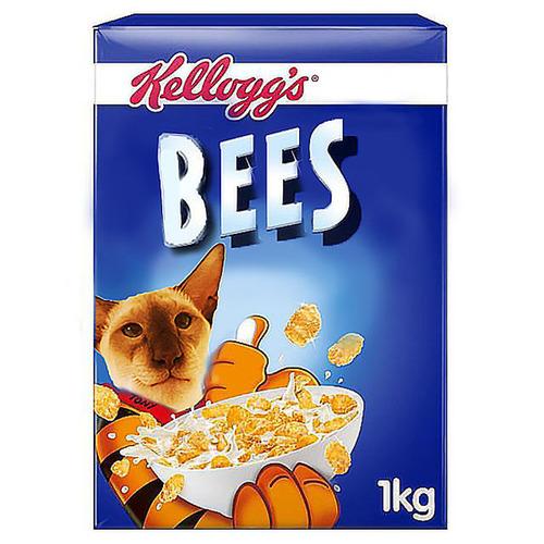 ハチを食べた猫06