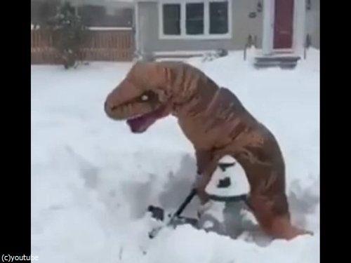 恐竜雪かき01