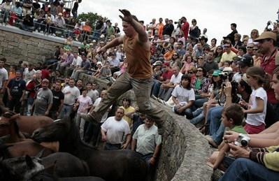 スペインの馬祭り01