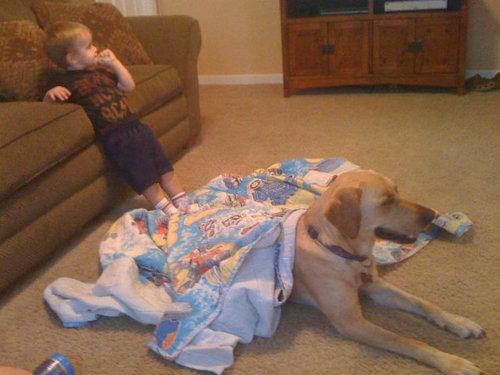 息子と愛犬の友情15