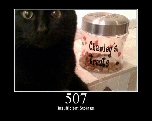 猫でHTTPステータスコード26