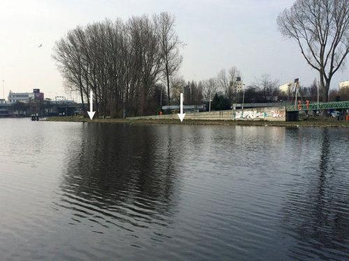 オランダの川辺をゴミ掃除07