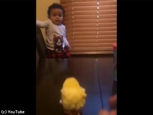 ひよこのおもちゃを怖がる赤ちゃんがじわる00