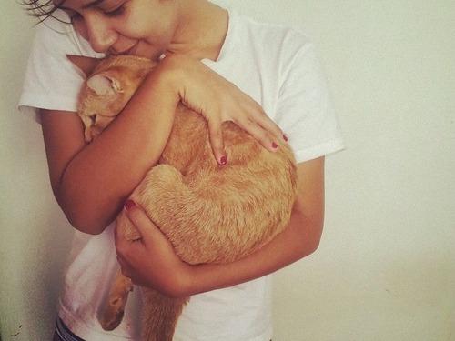 一日中猫を抱っこする仕事02