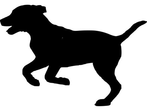 犬の噛み癖防止スプレー
